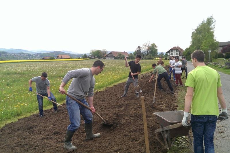 Gli studenti aiutano con il progetto